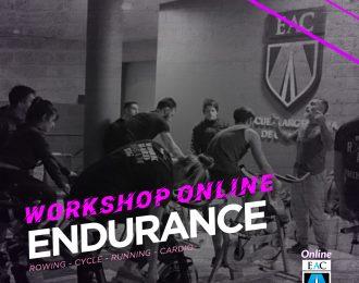 Workshop ENDURANCE